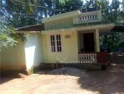 27 cent plot with old house for sale at Wayanad